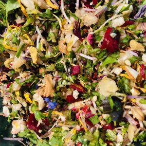 MOKYBird salade 06