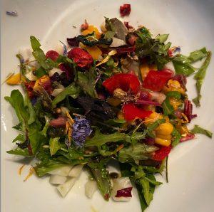 MOKY Bird salade dag 2